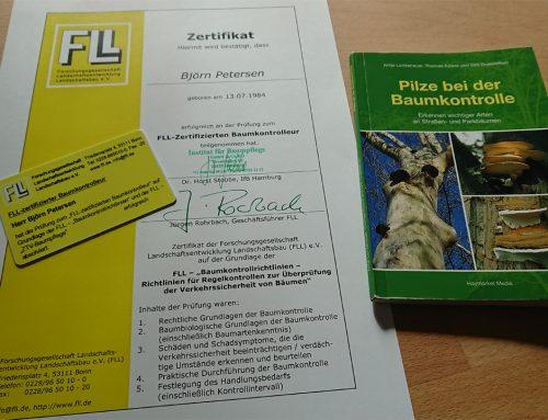 FLL zertifizierter Baumkontrolleur