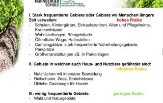 Quelle: Nürnberger Schule